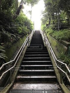 駆け上がる階段の写真・画像素材[1045562]