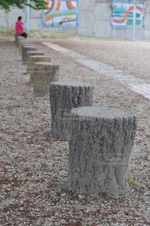 公園の椅子の写真・画像素材[1049276]
