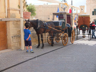 馬と少年の写真・画像素材[1045974]