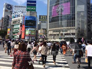 東京の写真・画像素材[1054311]