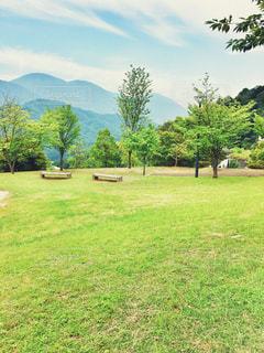 公園の写真・画像素材[1263670]