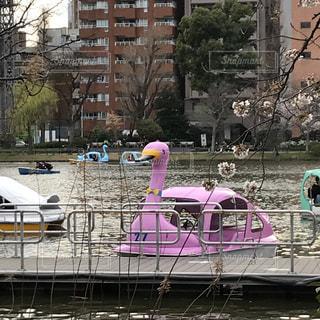 ピンクの建物の上に座ってボートの写真・画像素材[1080498]
