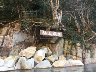 混浴温泉 仙人風呂の写真・画像素材[1046425]