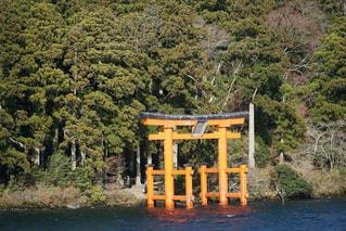芦ノ湖からみた鳥居の写真・画像素材[1047560]