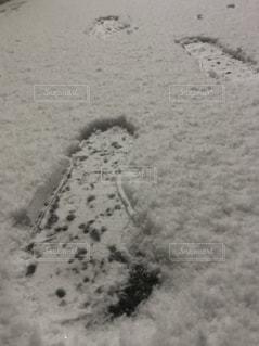 冬の足跡の写真・画像素材[1046935]