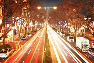 冬の表参道ロマンティック街道の写真・画像素材[1048564]