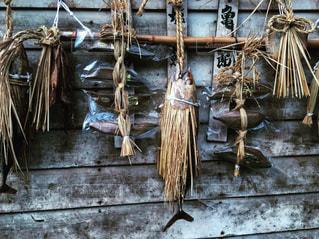 平城京からの贈り物 「正月魚」ありがつおの写真・画像素材[1060557]