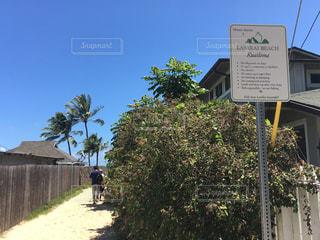 ラニカイビーチの写真・画像素材[1051291]
