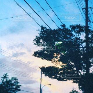 通りの眺めの写真・画像素材[1296434]