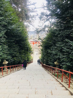 大崎八幡宮の階段 - No.1051888
