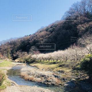 高尾山麓の上棚田橋から♡ - No.1062788