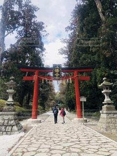 大崎八幡宮の鳥居⛩の写真・画像素材[1066969]