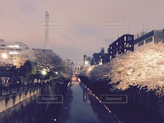 目黒川と桜 - No.1067183
