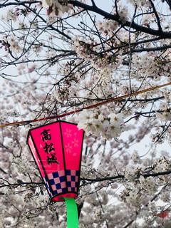 高松城の写真・画像素材[1098431]