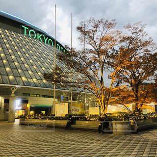 東京ドームの写真・画像素材[1651934]
