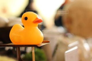 テーブルの上のヒヨコの写真・画像素材[1049660]