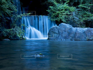 滝の写真・画像素材[213948]