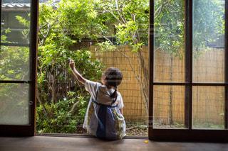 縁側でシャボン玉を楽しむ小学生女子の後ろ姿の写真・画像素材[2282498]