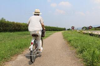 のどかな風景の道路を自転車で進む女性の写真・画像素材[3127133]