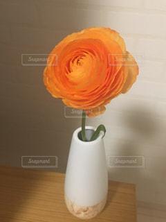 一輪の花の写真・画像素材[1068032]