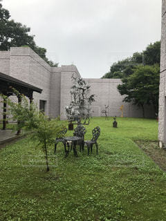 中庭にての写真・画像素材[1052128]