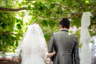 結婚式の写真・画像素材[1211511]