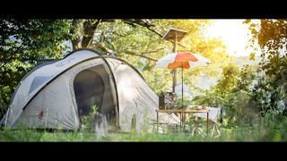 キャンプの風景の写真・画像素材[1229479]