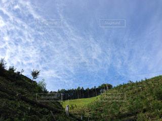 背景の山と木の写真・画像素材[1050370]