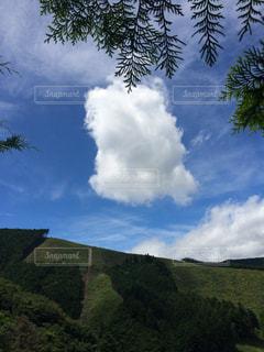 夏山の雲の写真・画像素材[1050377]