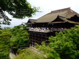 清水寺の写真・画像素材[1051194]