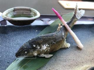 川床で鮎の塩焼き - No.1051580