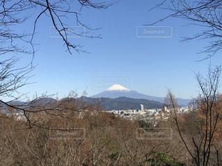 富士山の写真・画像素材[1059107]