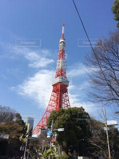 東京タワーの写真・画像素材[1051959]