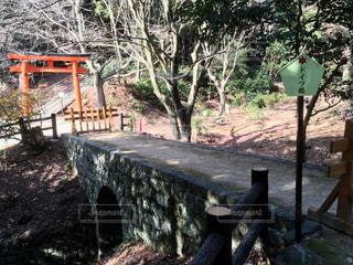 鳥居と石橋の写真・画像素材[1052103]