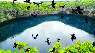 沖縄☆宮古島市☆伊良部島☆通り池☆の写真・画像素材[1153911]