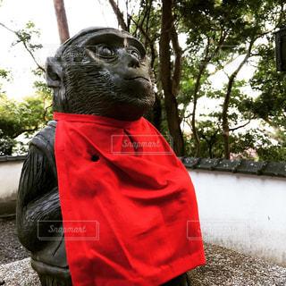 神社の写真・画像素材[1053081]