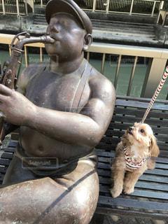 グリルで犬と人の写真・画像素材[1053547]