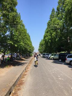 通りをバイクに乗っている人のグループの写真・画像素材[1167021]