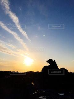空を飛んでいる人の写真・画像素材[1053806]
