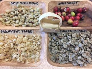 色んなコーヒー豆の写真・画像素材[1053817]