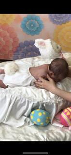 赤ちゃんのベッドの上で横になっています。の写真・画像素材[1054227]