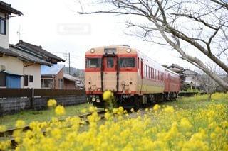 小湊鉄道の写真・画像素材[34674]