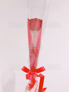 一輪の薔薇の写真・画像素材[1054635]