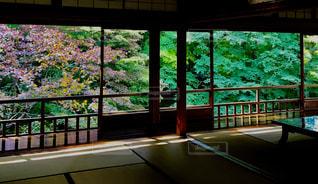窓からの眺めの写真・画像素材[1054931]