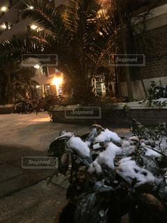 雪の日の夜の写真・画像素材[1055740]