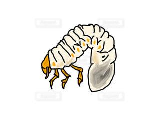 【イラスト】カブトムシの幼虫の写真・画像素材[2368320]