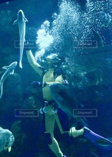 人々 のグループは水中の写真・画像素材[1080223]