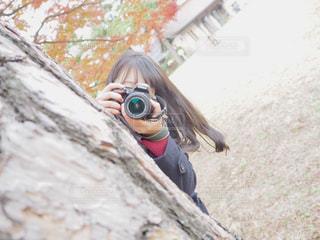 ぴょこの写真・画像素材[1069825]