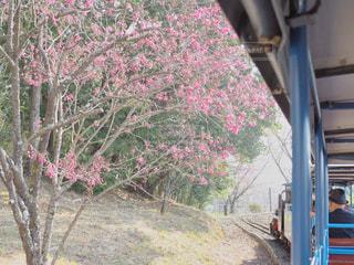 汽車からの眺めの写真・画像素材[1091997]