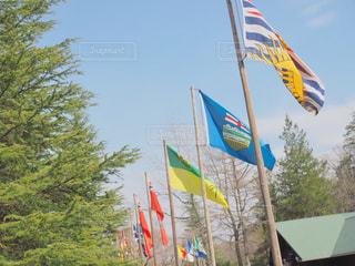 連なる国旗の写真・画像素材[1092027]